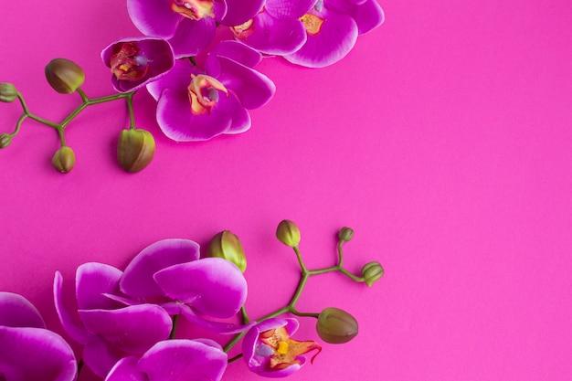 Flores de orquídeas sobre un fondo de espacio de copia violeta Foto gratis