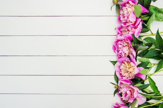 Flores de peonías sobre un fondo blanco. enfoque selectivo Foto Premium