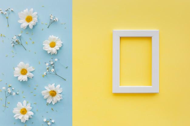Flores; pétalo y polen con marco de fotos en blanco blanco sobre doble fondo Foto gratis