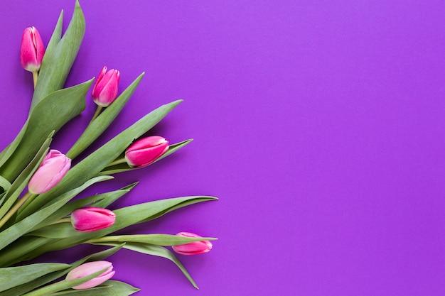 Flores de tulipán rosa degradado con espacio de copia Foto gratis