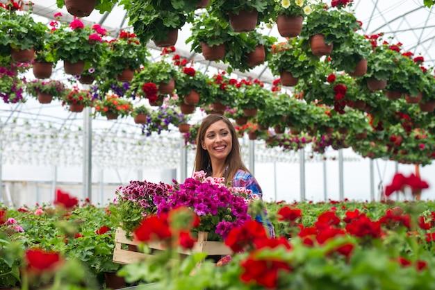 Floristería mujer alegre llevar caja con flores en invernadero de jardín de vivero de plantas Foto gratis