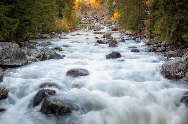 Flujo del río a través de la temporada de cambio Foto Premium