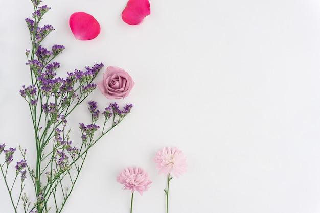 Fondo Blanco Con Flores Bonitas Y Pétalos Rosas