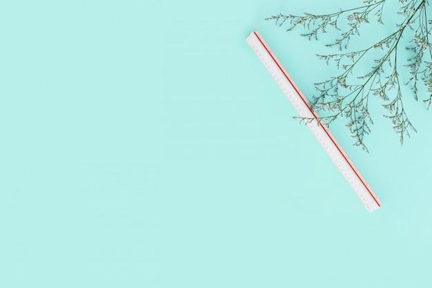 Fondo de color verde menta con ramas de flores y regla de escala en el lado derecho. arquitecto y diseñador de fondo con espacio de copia. Foto Premium