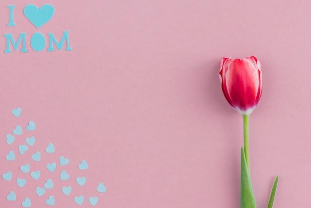 Fondos Para El Dia De La Madre: Fondo Decorativo Con Tulipán Y Corazones De Papel Azul