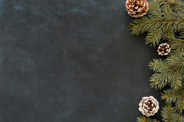 Fondo de espacio de copia de pizarra con hojas y conos Foto Premium