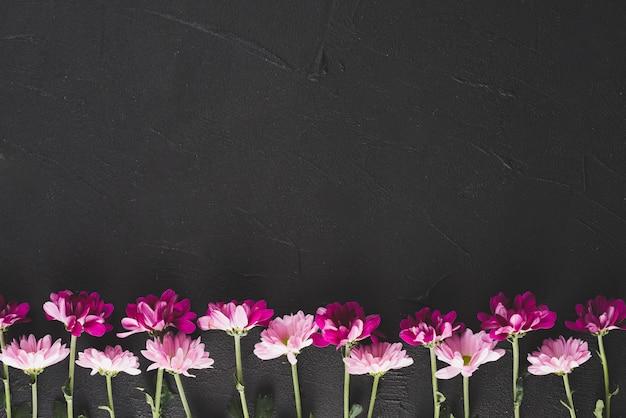 Fondo de flores con espacio Foto gratis