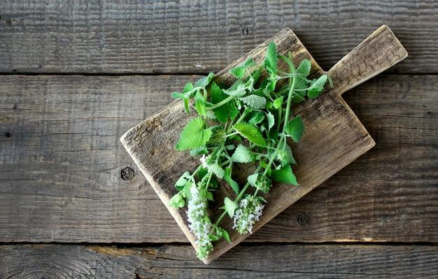 Fondo de madera de menta verde Foto Premium