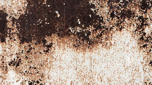 Fondo oxidado de la textura de la pared del edificio Foto gratis
