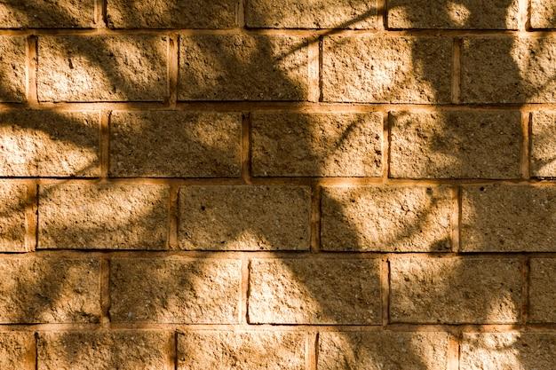 Fondo de pared de ladrillo y sombras de árboles Foto gratis