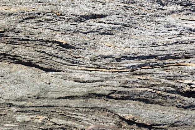 Fondo de roca ondulada Foto gratis