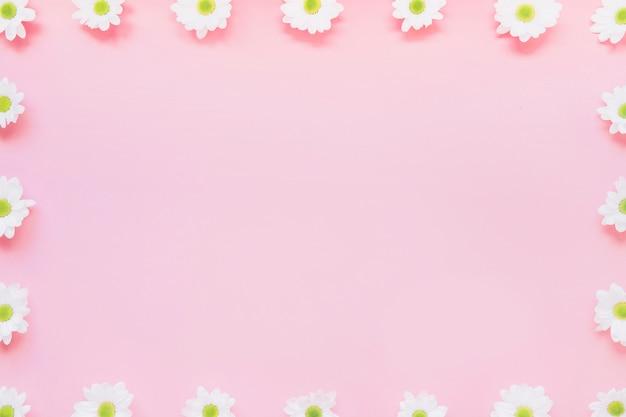 Fondo Rosa Con Flores En Bordes