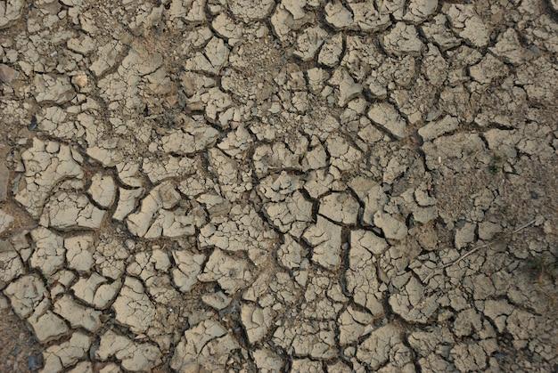 Fondo de sequía de tierra desecada Foto Premium