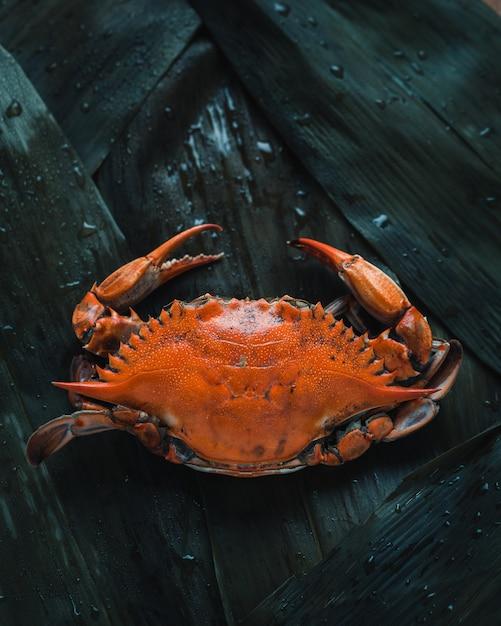 Foto de primer plano de un cangrejo naranja, vista superior Foto gratis