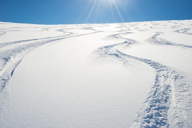 Freeride en pendiente fresca nevada Foto Premium