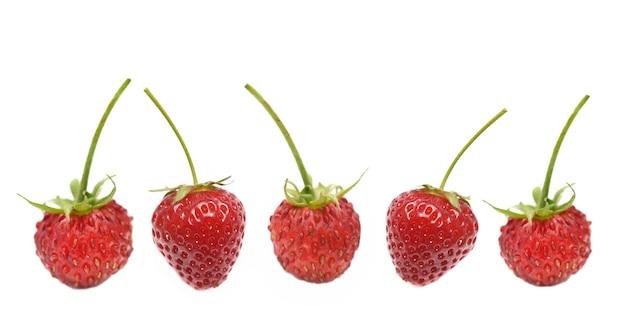 Fresas frescas en línea con tallo aislado sobre fondo blanco. Foto Premium