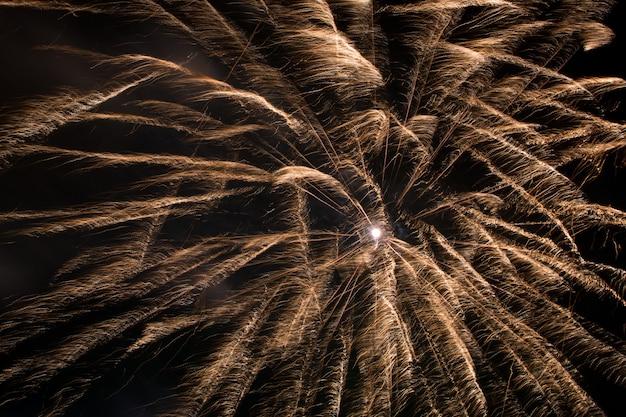 Fuegos artificiales en el cielo nocturno Foto Premium