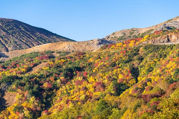 Fukushima mountain bandai otoño otoño Foto Premium