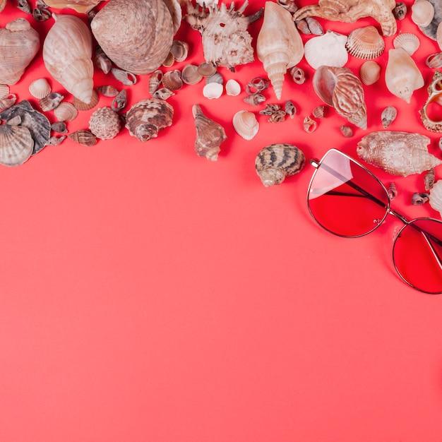 Gafas de sol y diferentes tipos de conchas sobre fondo coral Foto gratis