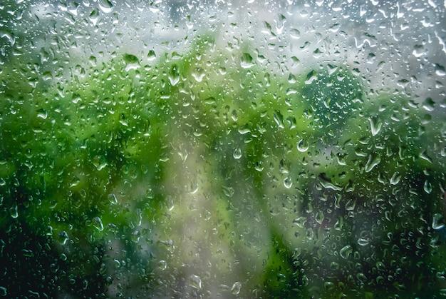 Gotas de lluvia en la ventana y el árbol verde en el fondo Foto Premium