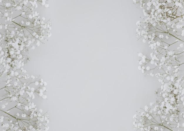 Gypsophila sobre fondo gris con espacio de copia en el centro Foto gratis