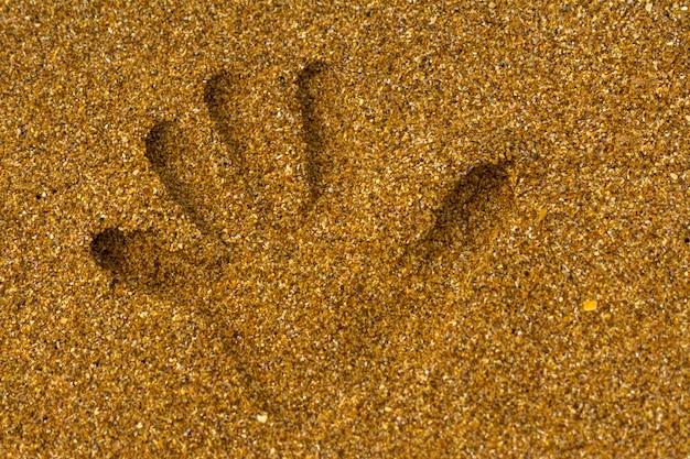 Handprint en la arena a la orilla del mar. Foto Premium