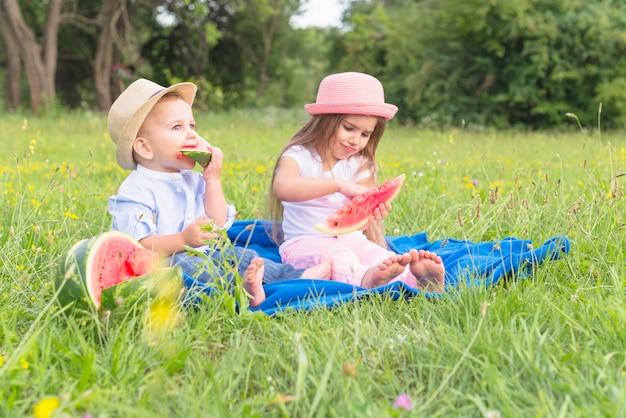 Hermano y hermana sentados en una manta azul sobre hierba verde comiendo sandía Foto gratis