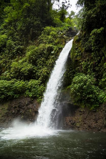 Hermosa cascada que fluye en la selva tropical en costa rica Foto gratis