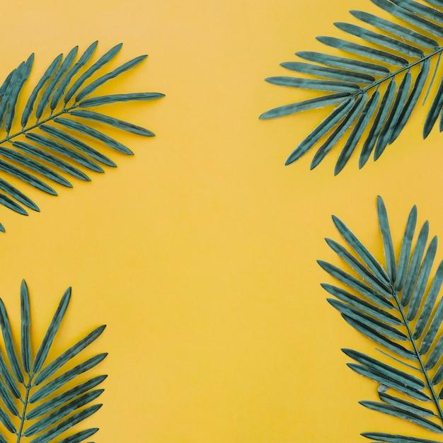 Hermosa composición con hojas de palma sobre fondo amarillo Foto gratis
