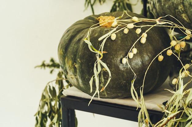 Hermosa decoración de mesa de otoño con calabaza verde Foto Premium