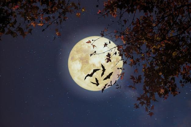 Hermosa fantasía de otoño, árbol de arce en otoño y luna llena con estrella. estilo retro con tono de color vintage. halloween y acción de gracias en el fondo del cielo nocturno. Foto Premium