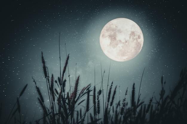 Hermosa fantasía de otoño - árbol de arce en la temporada de otoño y la luna llena con la estrella de la vía láctea en el fondo de los cielos nocturnos. ilustraciones de estilo retro con tono de color vintage Foto Premium