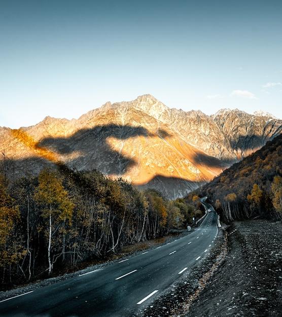 Hermosa foto de una carretera rodeada de árboles Foto gratis