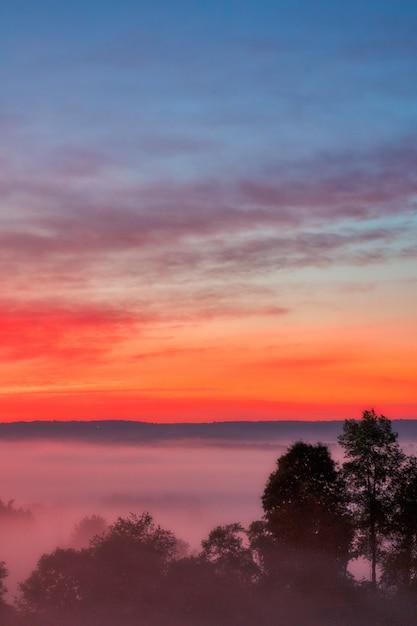 Hermosa foto de la increíble puesta de sol con el cielo rojo sobre un bosque brumoso en el campo Foto gratis