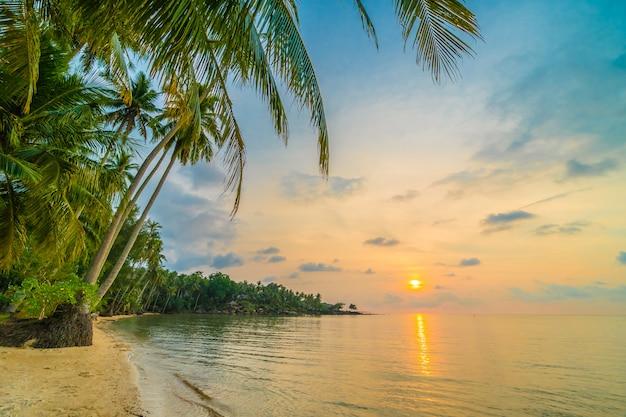 Hermosa isla paradisíaca con playa y mar alrededor de palmera de coco. Foto gratis