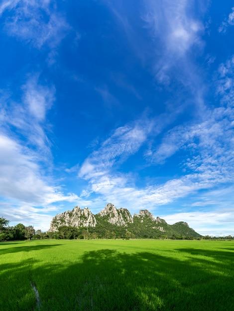 Hermosa montaña en el cielo azul, campos de arroz en primer plano, provincia de nakhon sawan, al norte de tailandia Foto gratis