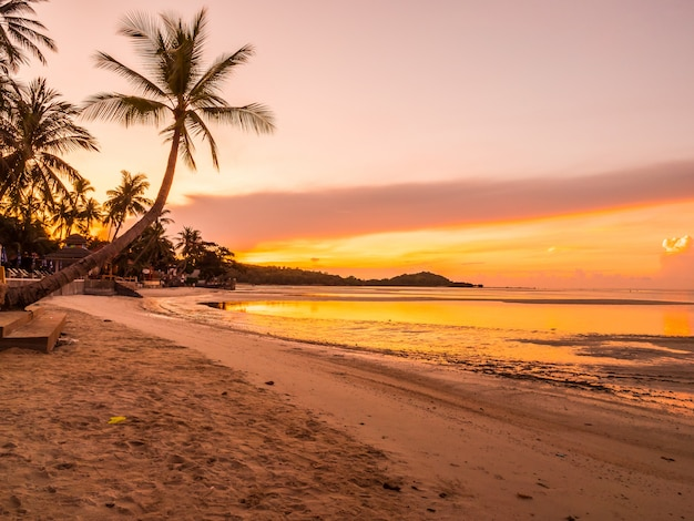 Hermosa playa tropical mar y océano con palmera de coco en el momento de la salida del sol Foto gratis
