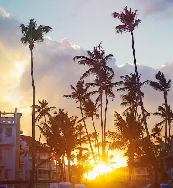 Hermosa puesta de sol en un resort de playa en el trópico Foto gratis