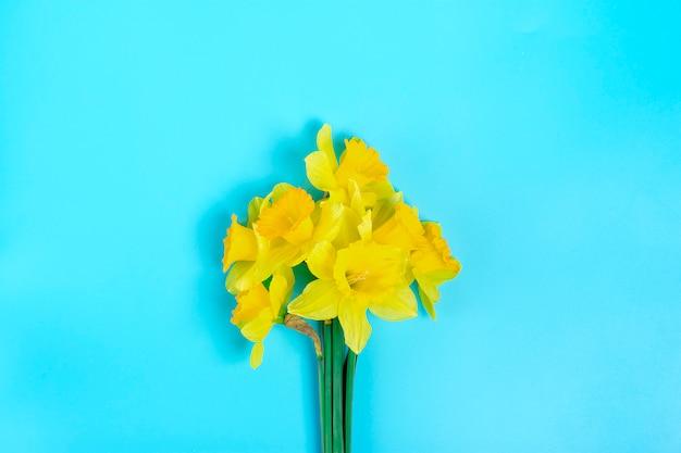 Hermosas flores amarillas de narcisos sobre un fondo azul endecha plana Foto Premium