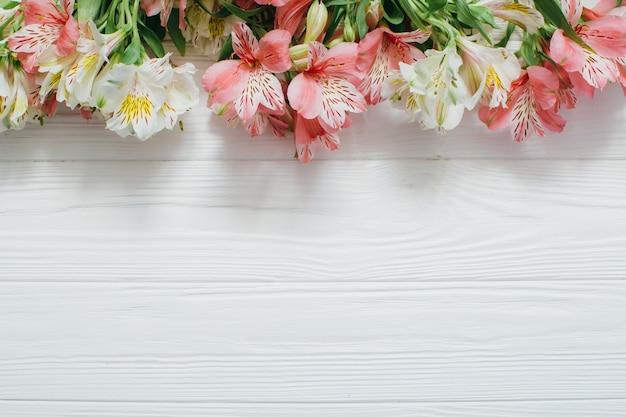 Fondo De Madera Vintage Con Flores Blancas Manzana Y: Hermosas Flores Sobre Fondo Blanco De Madera