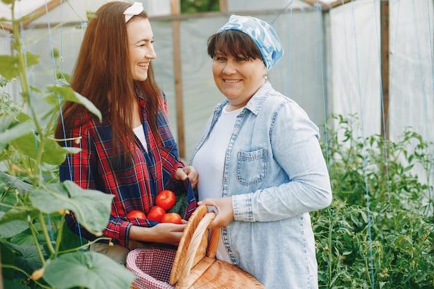 Hermosas mujeres trabaja en un jardín. Foto gratis