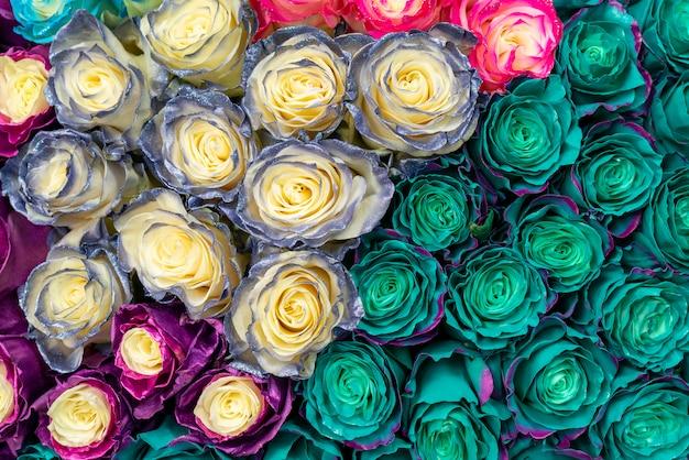 Hermosas rosas azules para boda y compromiso. Foto Premium