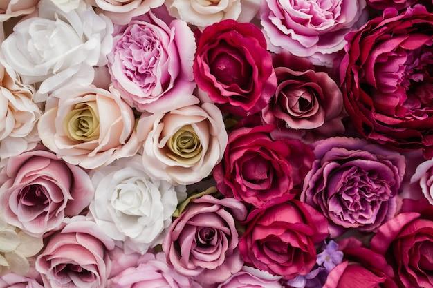 Hermosas rosas rojas y blancas rosadas