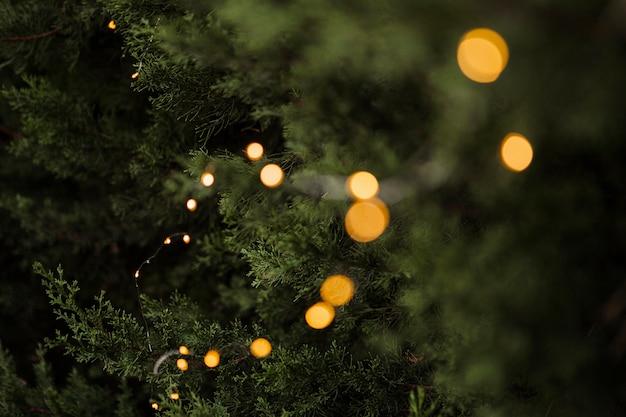 Hermoso árbol y luces para el concepto de navidad Foto gratis