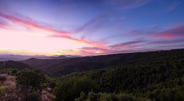 Hermoso cielo en tonos azules con bosque Foto gratis