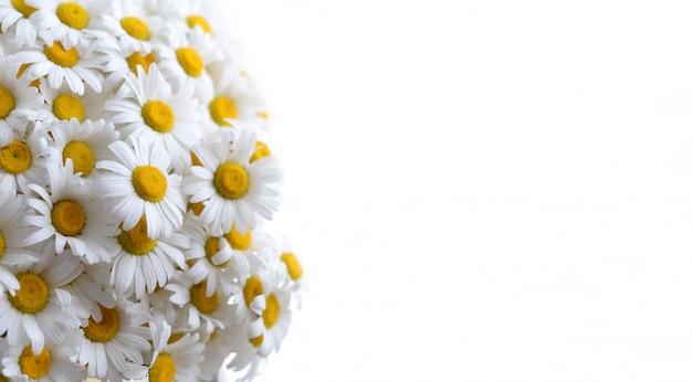 Hermoso fondo con flores, copyspace Foto Premium