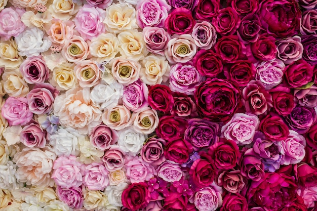 Hermoso fondo rosas para el día de san valentín. Foto gratis