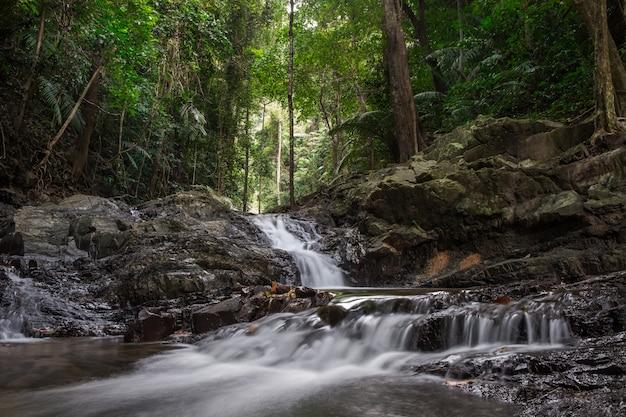 Hermoso paisaje con una cascada en un bosque lluvioso Foto Premium