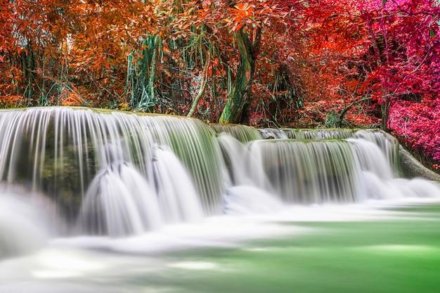 Hermoso paisaje de cascada de naturaleza de bosque profundo colorido en día de verano Foto Premium