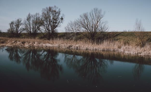 Hermoso paisaje de un lago con el reflejo de los árboles sin hojas Foto gratis